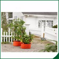 Buy cheap Felt Weatherproof Plant Grow Bags For Home / Garden Grow Bags For Plants 12X24 Grow bags Felt material from wholesalers