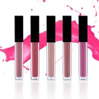 Buy cheap 17 Colors Lip Makeup Products Moisturizing Glossy Lipgloss Waterproof MSDS from wholesalers