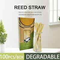 Cheap 100% Biodegradable / Compostable / Disposable/Eco Friendly Reed Straws Drinking Straw,Bamboo /paper/reed /wheat Straw for sale
