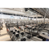 Cheap Aseptic Bag Fresh Tomato Paste Production Line 250t/d for sale