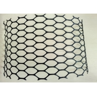 Cheap 30m HDPE Black Plastic Poultry Netting for sale