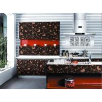 Cheap Glossy UV MDF With Designs for Kitchen Cabinet (ZH C858) for sale
