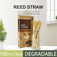 Cheap Natural Bamboo drinking straws/ Eco friendly bamboo straw high quality/ Reed straws with best price for sale