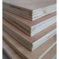Cheap Birch Hardwood Faced Plywood , Environmental Protection Staining Marine Plywood for sale