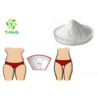 China Weight Loss Raw Supplement 99% Food Grade Bulk Acety L-Carnitine Base Powder on sale
