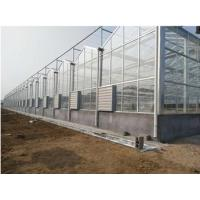 Cheap Glass Greenhouse for griculture Vegetables hydroponic systems equipment Multi-Span Glass for sale