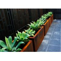 Cheap Customized Square Metal Planters Outdoor Corten A Material 50cm Height for sale