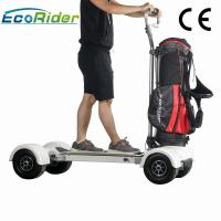 Cheap 1000w Electric Ride On Golf Scooters 60-80km Mileage 4 Wheel Big Tire Electric Skateboard for sale