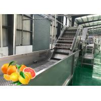 Cheap Professional Tangerine Citrus Processing Equipment 5T/H  ISO Certificate for sale