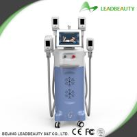 2016 most professional 4 handpieces cryolipolysis slimming machine