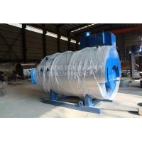Stainless Steel Gas Fired Steam Boiler Multiple Protection Industrial Natural Gas Boiler
