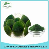 China Nutrition Additive Raw Material of Cosmetic New Aga Product Chlorella Extract Powder on sale