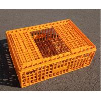 Cheap Platic bird transport crate for sale