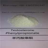 Cheap Testosterone Phenylproprionate Raw Steroid Powder Test PP CAS 1255-49-8 White Color for sale
