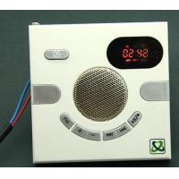 Cheap FM playing speaker withTF card MP3 for sale