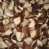 Cheap Frozen Mushroom Slice for sale