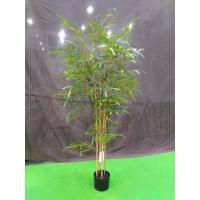 Cheap Elegant Artificial Garden Plants Bamboo Tree Easy To Clean For Flower Arrangement for sale