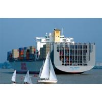 Cheap ocean freight from seaports of China for sale