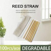 Cheap Biodegradable Straw Drinking Straws Ecological Eco Friendly Reed Straw for sale