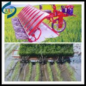 China high efficiency rice planting machine on sale