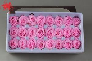 Cheap Wholesale real preserved rose stabilized natural preserved fresh flowers for Valentines day for sale
