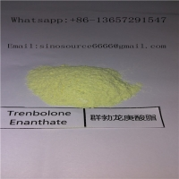 Cheap Powerful Trenbolone Enanthate Powder , Cutting Cycle Steroids Supplements Yellow Powder for sale