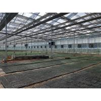 Buy cheap Plastic/glass Greenhouse Greenhouse for Strawberries from wholesalers