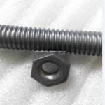 Cheap Molybdenum screw Molybdenum bolt nut for sale