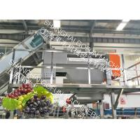 Cheap 20 T/H Stable Grape Juice Processing Line Extractor Vacuum Pressing System for sale