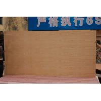 China red oak plywood & red oak fancy plywood on sale