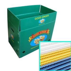 Polypropylene Corrugated Cartons / Corflute Box / Coroplast
