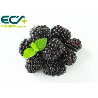 Normal Blood Clotting Organic Blackberry Powder , Health Vitamin K Powder