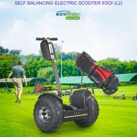 Cheap Outdoor Electric Golf Scooter Self Balance 19 Inch Fat Tire Two Wheels Chariot for sale