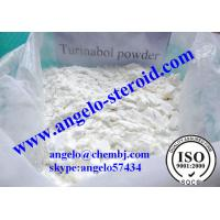 buy turinabol powder