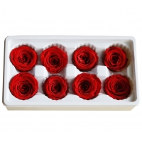 Cheap Natural preserved fresh flowers for Valentines day Never Withered Flowers Home Decoration for sale