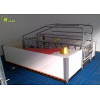 Cheap Automatic Swine Farrowing Crates Stainless Steel Drinker Cast Iron Floor for sale