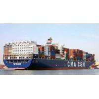 China Professional Lcl Ocean Freight Lcl Fcl Shipment China To Bolivia Colombia Ecuador on sale