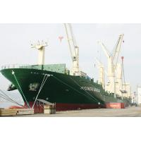 Cheap FCL Shipment to Middle East,Red Sea from Shenzhen/Foshan for sale