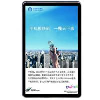 China Wall Mounted Vertical Apple Style WIFI Touch Panel All In One PC 22 Inch For AD on sale