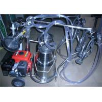 Cheap Trolley type Gasoline Engine Portable Cow Milking Machine For Farm for sale