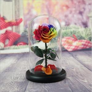 Cheap Preserved Flower Eternal Rose in Glass Long Lasting Flowers Home Decoration Everlasting Flowers for sale