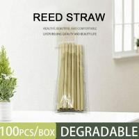 Cheap 100% Biodegradable Natural 15-20cm length 5g 10g weight yellow green color 3-5mm large Eco friendly Reed straw for sale