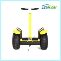 Cheap Electric Two Wheel Smart Balance Scooters Off Roading Segway Waterproof for sale