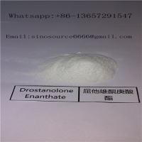 Cheap Pharmaceutical Injectable White Masteron Steroids Drostanolone Enanthate For Bodybuilding for sale