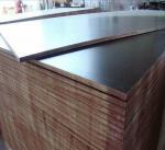 Hardwood Construction External Ply Sheets / First Class Grade Film Faced Marine
