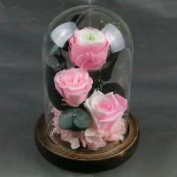 Cheap Beautiful Preserved Rose in Glass Dome enchanted roses arrangement for lover for sale