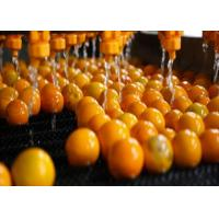 Cheap Food  Industry NFC Citrus Processing Line 220v Water Saving Long Service Life for sale