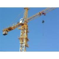 Cheap Sell/Buy16T TOWER CRANE (QTZ315 (HS7040))  AFRICA/RUSSIA/ASIA for sale