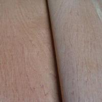 Quality 12mm BB/CC Grade Red Hardwood Faced Plywood with 1,220 x 2,440m wholesale
