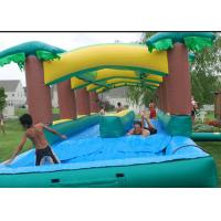 Cheap Attractive  Adult Inflatable Slip N Slide With Pool Fireproof 3 Years Warrenty for sale